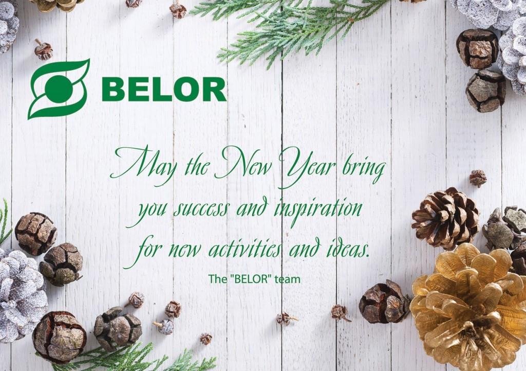 2015 metų Kalėdinis sveikinimas en